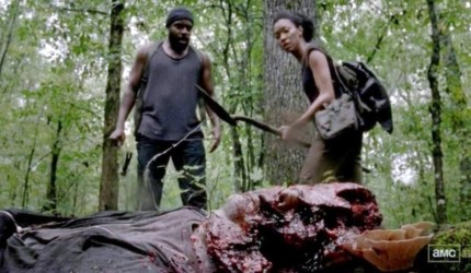 Newcomers Tyreese (Chad Coleman) and Sasha (Sonequa Martin-Green) to AMC's The Walking Dead