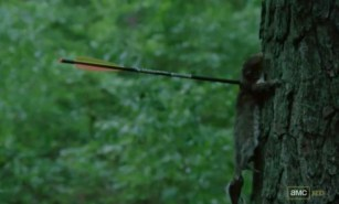 Daryl Dixon (Norman Reedus) shoots a squirrel in AMC's The Walking Dead