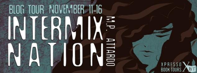 Intermix NationTour Banner