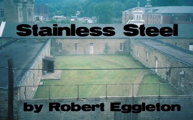 Stainless Steel by Robert Eggleton