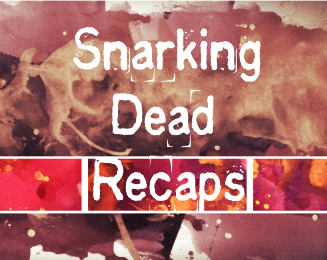 The Snarking Dead TV Recaps banner
